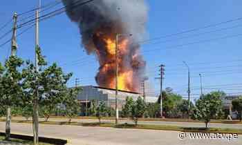 Pucallpa: Alerta por reactivación de incendio en planta envasadora - ATV.pe