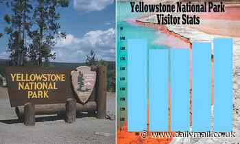 Yellowstone National Park records highest August visitor number ever as 920,000 come to