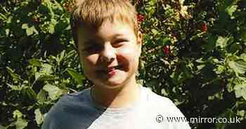 Boy, 9, 'mauled to death by pitbull while mum was binging on cocaine in nearby caravan'