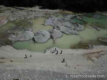 Medio Ambiente interviene extracción ilegal de materiales en Muchas Aguas, San Cristóbal - Roberto Cavada