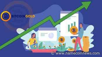 Bitcoin Gold Price Tumbles 25%; Can BTG Rise Again? - NameCoinNews