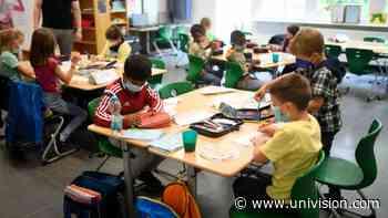 ¿Cómo está cuidando del coronavirus a los estudiantes Nueva Jersey? Responde el gobernador Murphy - Univision 41 Nueva York