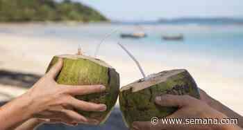 Agua de coco: estos son sus beneficios milagrosos para fortalecer el sistema inmune y la digestión - Revista Semana