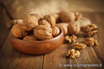 Consumare noci riduce il colesterolo LDL e migliora la qualità delle particelle LDL - Nutri & Previeni