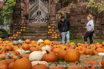 Fall in Montclair: Pumpkins, apples and animals, oh my! - Montclair Local