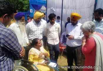 2,072 get jobs at district level rozgar mela held at Government College Malerkotla - The Tribune India