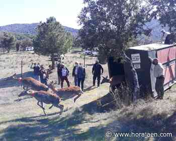 Los recursos naturales y paisajísticos de Santa Elena como destino rural de primer nivel en Jaén - HoraJaén