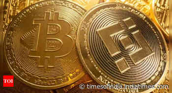 US Cryptocurrency users mostly young males; XRP, Ethereum users most educated: Survey - Times of India