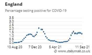 What school wave? Covid cases in England fall AGAIN, Office for National Statistics says