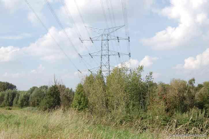 Bomen in De Lisdodde moeten wijken voor hoogspanningskabels