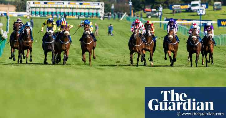 Talking Horses: Speedy Just Frank will be hard to pass in Ayr Gold Cup
