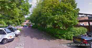 Man arrested for murder of dog walker in his 60s who died after assault