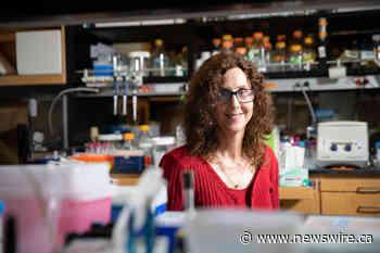Pamela Björkman wins the 2021 Pearl Meister Greengard Prize
