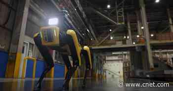 Boston Dynamics' Spot becomes robotic watchdog for Hyundai     - Roadshow