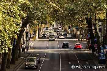 Feria de Movilidad Sustentable, en Buenos Aires - Webpicking.com