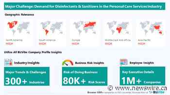 BizVibe Highlights Key Challenges Facing the Personal Care Services Industry   Monitor Business Risk and View Company Insights