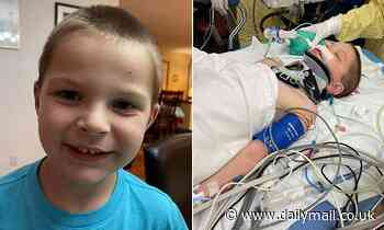 Boy, six, is fighting for his life after a lawn mower threw a 12-inch piece of steel at his head