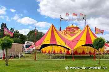 WIN. Circus Barones is terug van weggeweest en komt naar Halle (en jij kan er gratis bij zijn) - Het Nieuwsblad