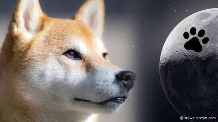 Dogecoin's Four-Legged Fall — DOGE Slides to 9th Market Cap Position Dropping 18% Last Month – Market Updates Bitcoin News - Bitcoin News