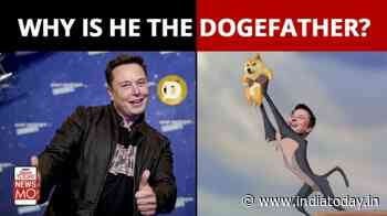 Elon Musk's Doge Tweet sends Dogecoin soaring | Musk Effect - India Today