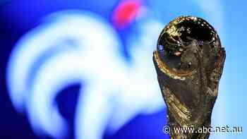 Biennial World Cup proposals slammed