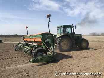 Mercedes, sus campos y su agroindustria - Noticias Mercedinas