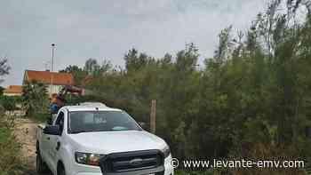 El férreo control en zonas públicas no frena al mosquito tigre en Almardà - Levante-EMV