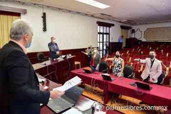 Crean el Consejo de Tutelas del Municipio de Xalapa - plumas libres