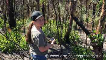Phone app to help protect endangered birds - Armidale Express