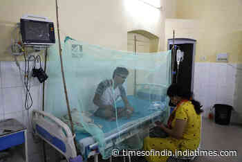 Indore reports 22 new dengue cases in last 24 hrs, total tally 225