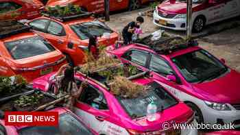 Thailand Covid: Idle taxis used to grow food for out-of-work drivers