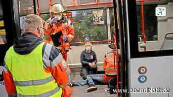 """Acht """"Verletzte"""" bei Busunfall auf K80 in Reinbek - Hamburger Abendblatt"""