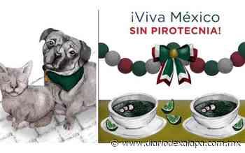 Grita ¡Viva México! pero sin pirotecnia; conoce los riesgos de lanzar cohetes - Diario de Xalapa