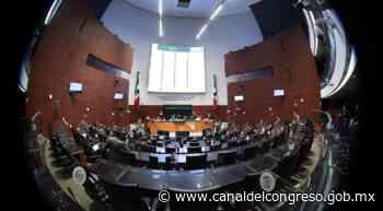 Noticias del Congreso - Avalan fortalecer la visión municipal en el Consejo Nacional de Seguridad Pública - Canal del Congreso