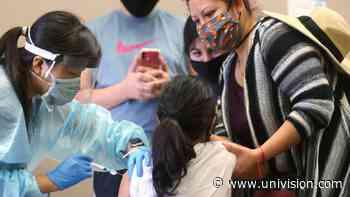 En medio de la lucha contra el coronavirus, médicos en Arizona recomiendan vacunarse contra la influenza - Univision Arizona