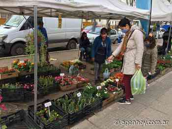 Sábado: jornada hortiflorícola en Varela - agenhoy.com.ar