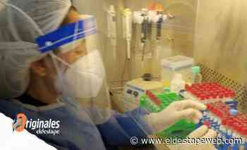Proponen una novedosa estrategia para detectar y prevenir la circulación del coronavirus en las escuelas - eldestapeweb.com