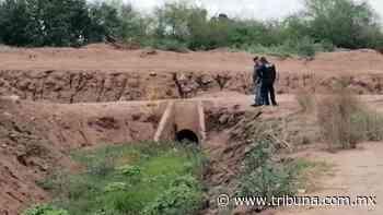 Era de Huatabampo: Reconocen cuerpo en descomposición hallado en el Valle del Yaqui - TRIBUNA