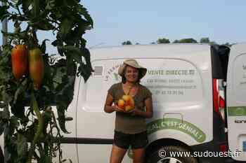 Lescar : Mélissa Joubert, maraîchère bio, a ouvert une cagnotte en ligne pour financer sa serre à plants - Sud Ouest