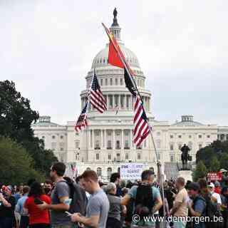 Bij de demonstratie in Washington: 'Je merkt hoe groot het geloof in The Big Lie is'