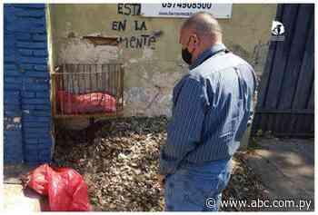Colitas mutiladas halladas en Asunción serían de origen bovino - ABC Color