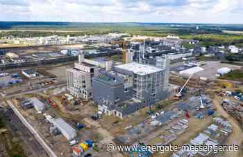BASF und CATL schließen Batterie-Partnerschaft - energate messenger+ - energate messenger