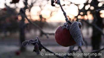 Wetter in Deutschland: Kälteeinbruch? Meteorologe mit düsterer Prognose für den Herbst