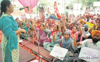 Contractual employees take out march to press for regular jobs - The Tribune