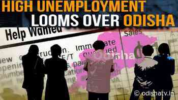 8 lakh Young Workers In Odisha Lost Jobs In 2020, No Employment For 37 lakh: PLFS - OTV News
