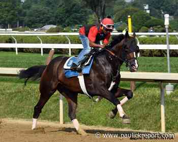 'Quirky' Weyburn Breezes Seven Furlongs In Preparation For Pennsylvania Derby - Horse Racing News - Paulick Report