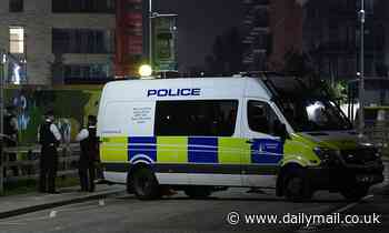 Woman's body found in Greenwich park near community centre as man arrested on suspicion of murder