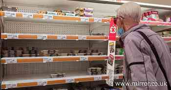 Tories deny 'Dad's Army panic' as chicken could run short in 2 weeks in gas crisis