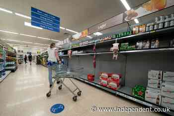 Britain faces shortages of frozen food and meat as CO2 supplies hit by gas price spike - The Independent