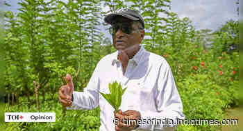 Lankan food crisis shows perils of organic farming - Times of India